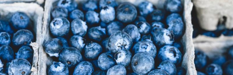 Abnehmen ohne Hungern - klappt mit Blaubeeren!
