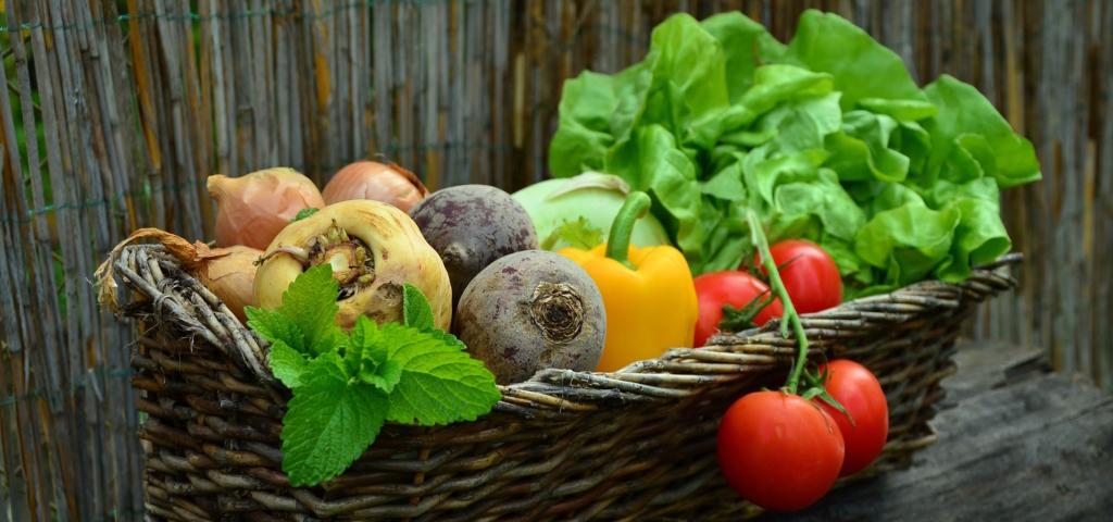 Richtige Ernährung für Muskelaufbau - Reichlich Kohlenhydrate sind der Schlüssel zum Erfolg!